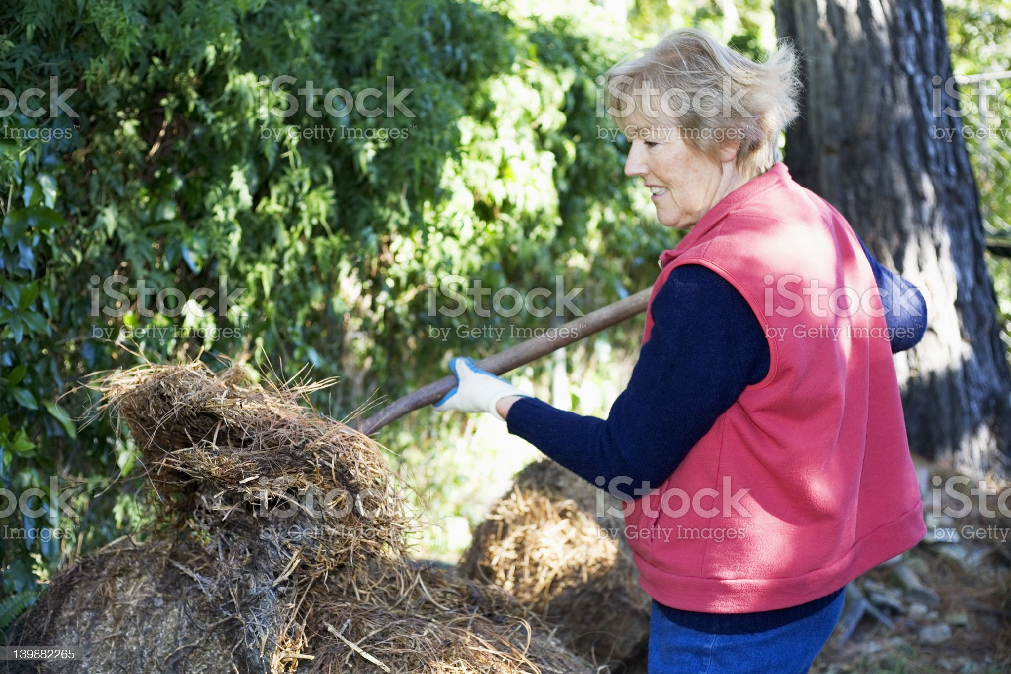 Lady pitching a straw bale royalty-free stock photo