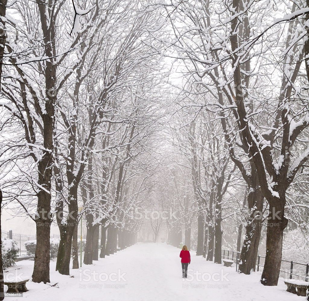 Lady walking in a snow covered boulevard royalty-free stock photo
