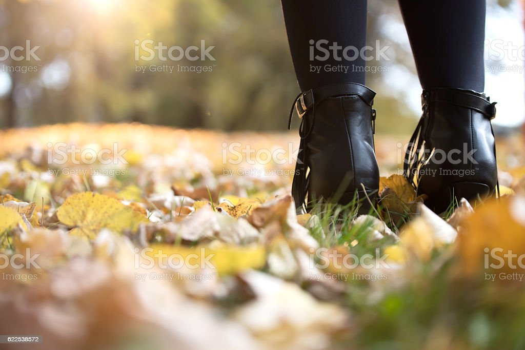 Lady with elegant black boots standing on fallen leaves stock photo