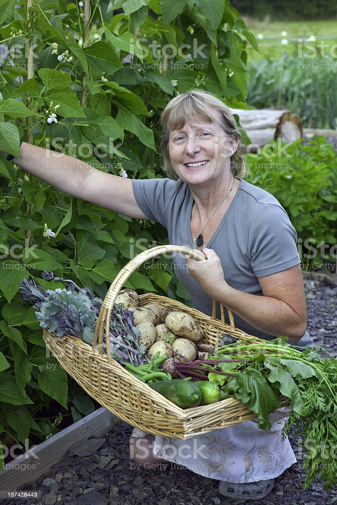 Lady With Fresh Vegetables Picking Beans royalty-free stock photo