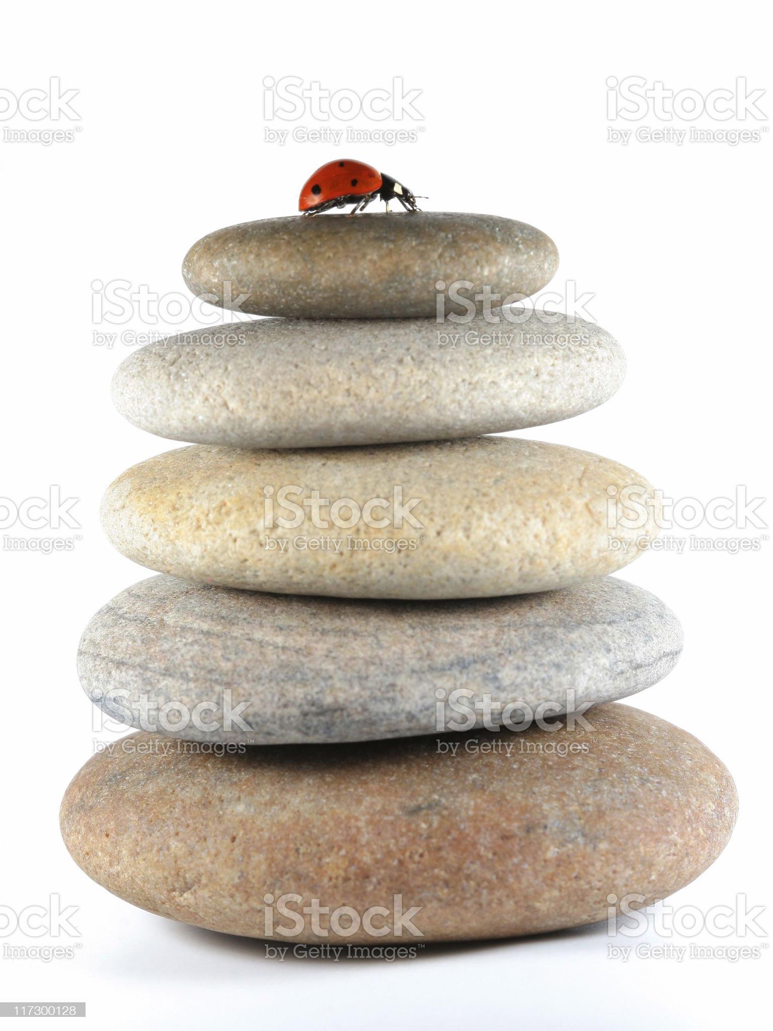 Ladybug and pebbles stack royalty-free stock photo