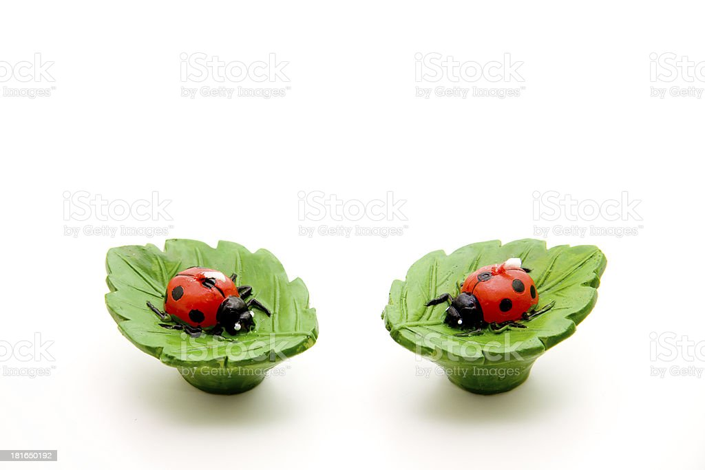 Ladybug as a swimming candle royalty-free stock photo