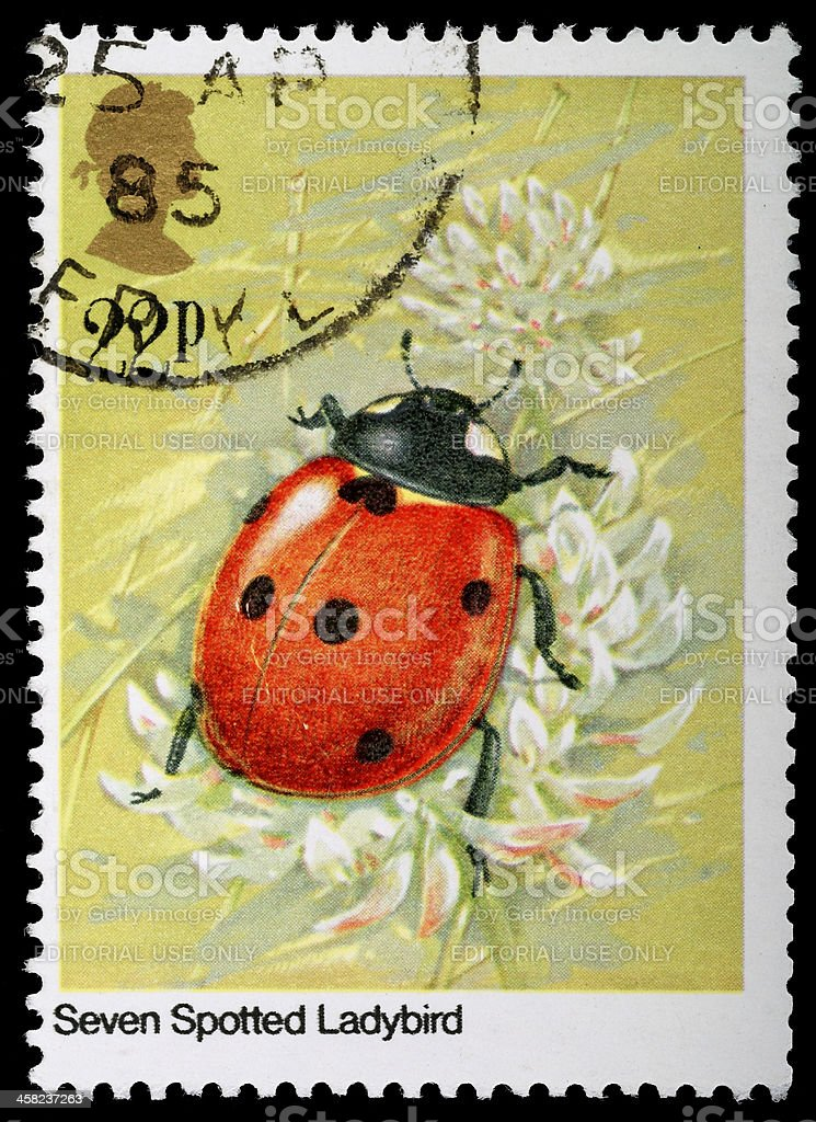 Ladybug Ladybird Postage Stamp royalty-free stock photo