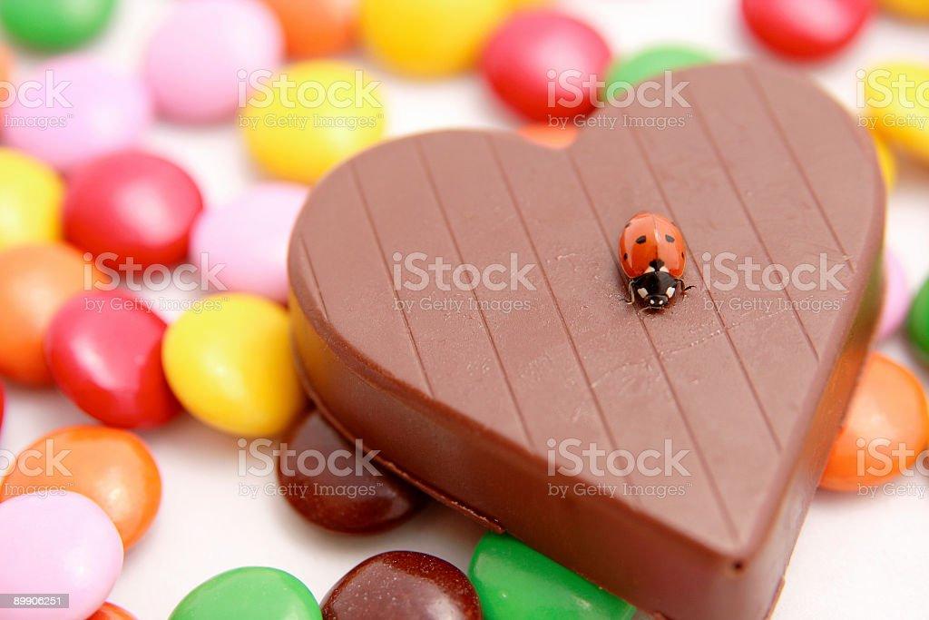 Ladybug on the heart chocolate royalty-free stock photo