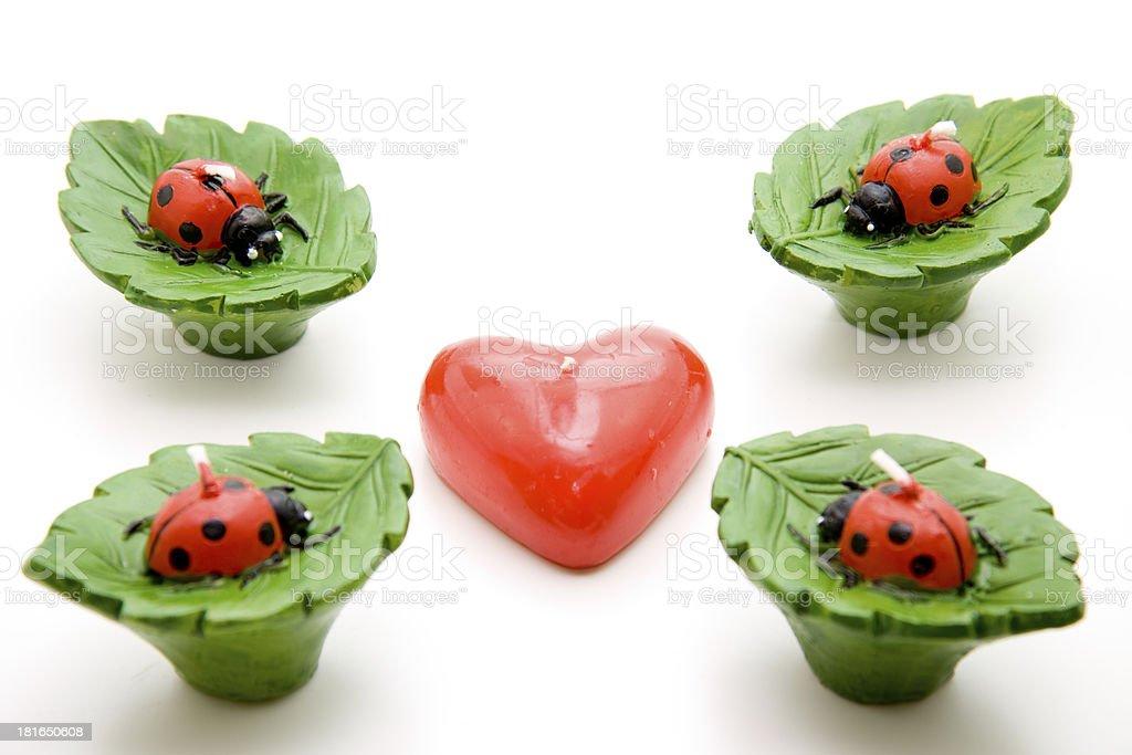 Ladybug with heart royalty-free stock photo