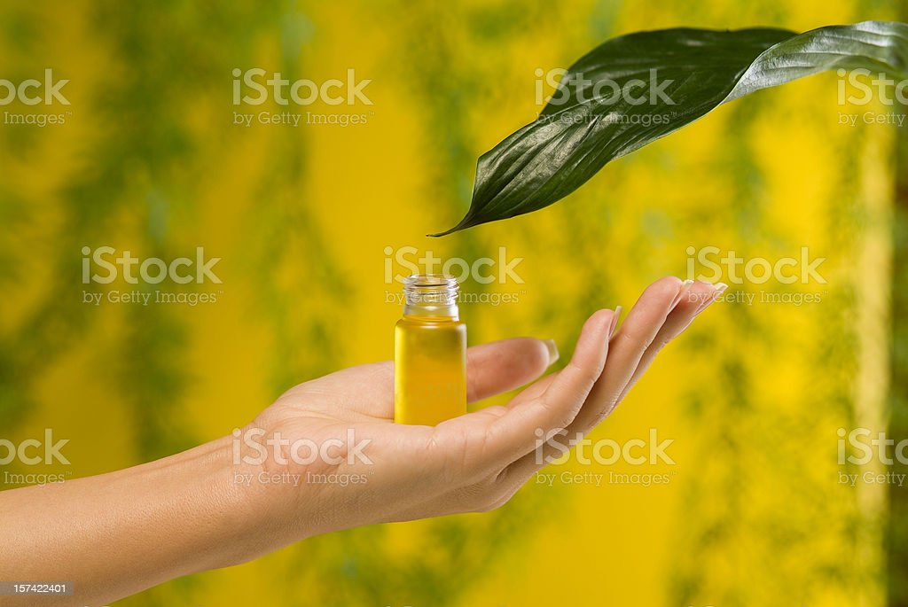 Lady's hands royalty-free stock photo