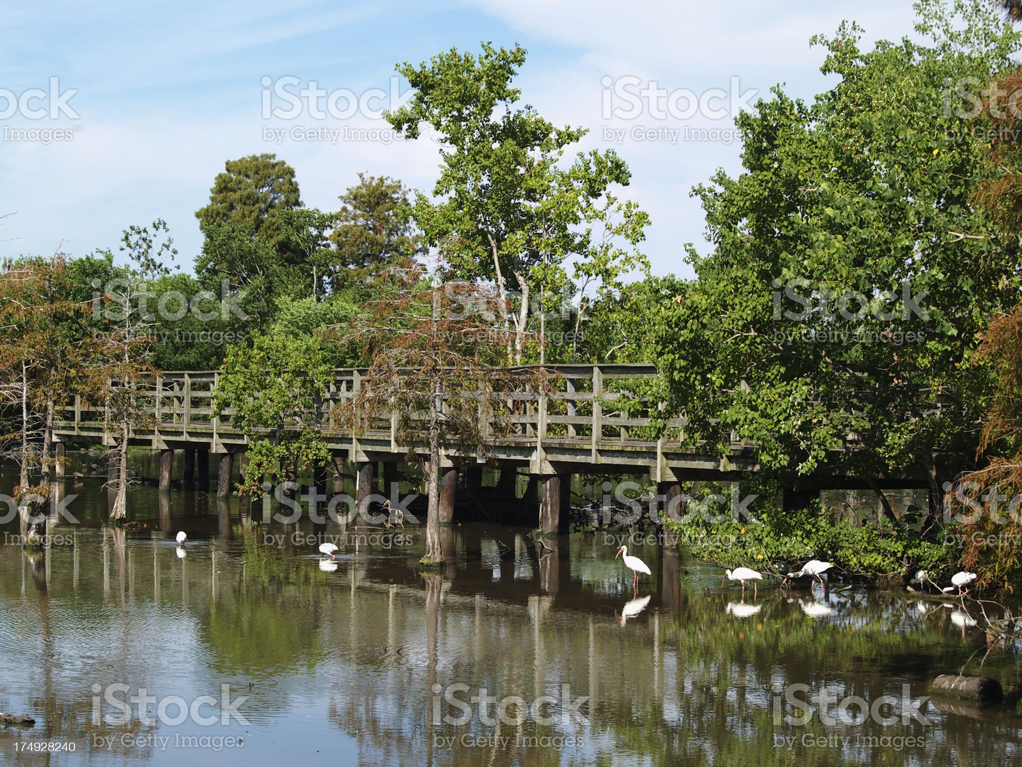 Lafreniere Park footbridge royalty-free stock photo