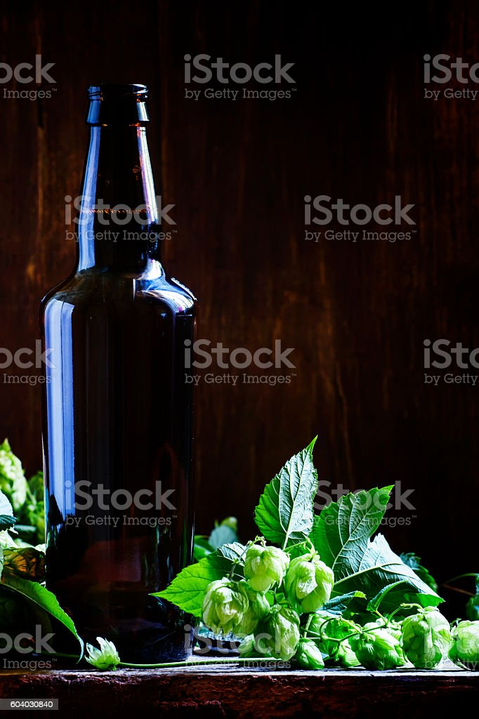 Lager beer in brown bottle with hop cones stock photo