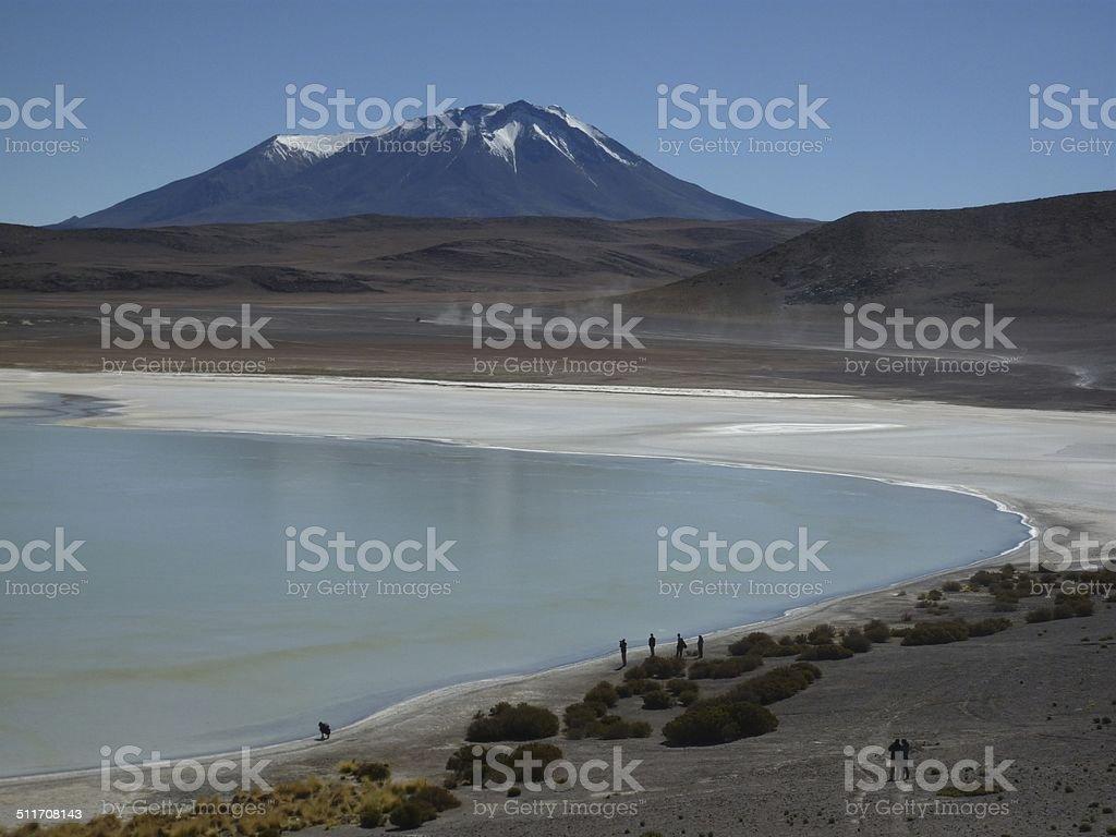 Lagoon Altiplano South America.. stock photo