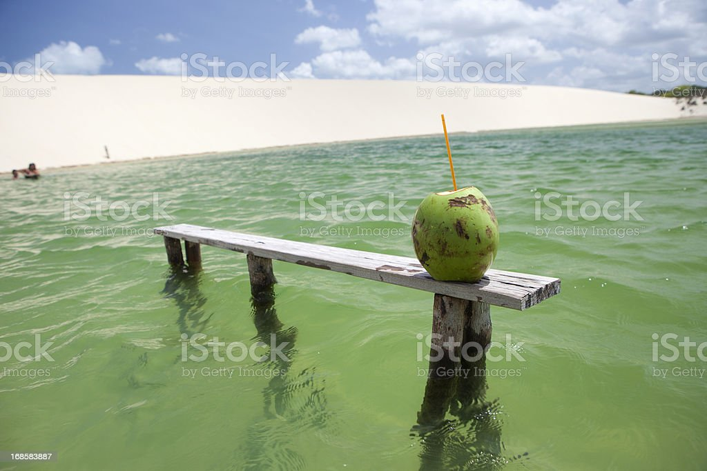 Lagoon and Coconut, Jericoacoara, Brazil stock photo