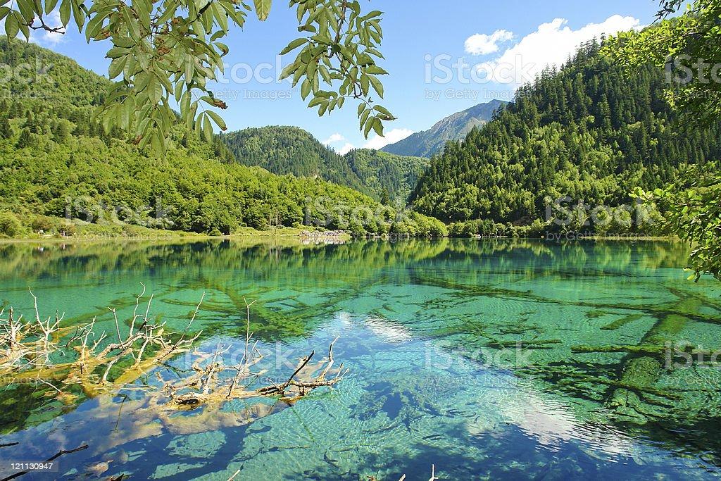 Lagoon and trees at Jiuzhaigou Valley in China stock photo