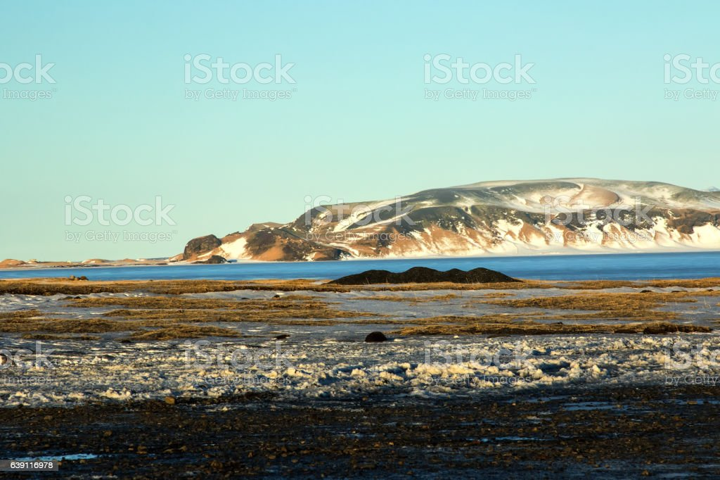 Lagoon at Dyrholaey, Iceland stock photo
