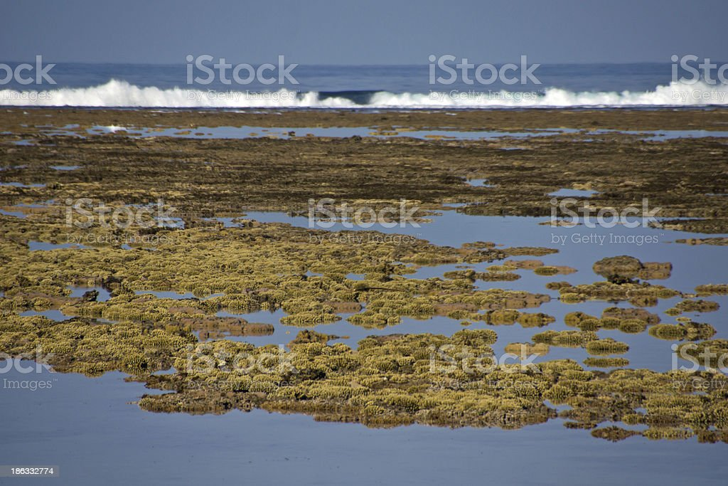 Lagoon in Reunion royalty-free stock photo