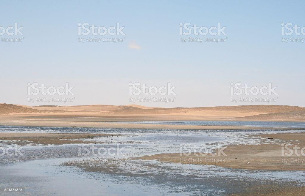 Lagoon of Walvis Bay, Namibia, Africa stock photo