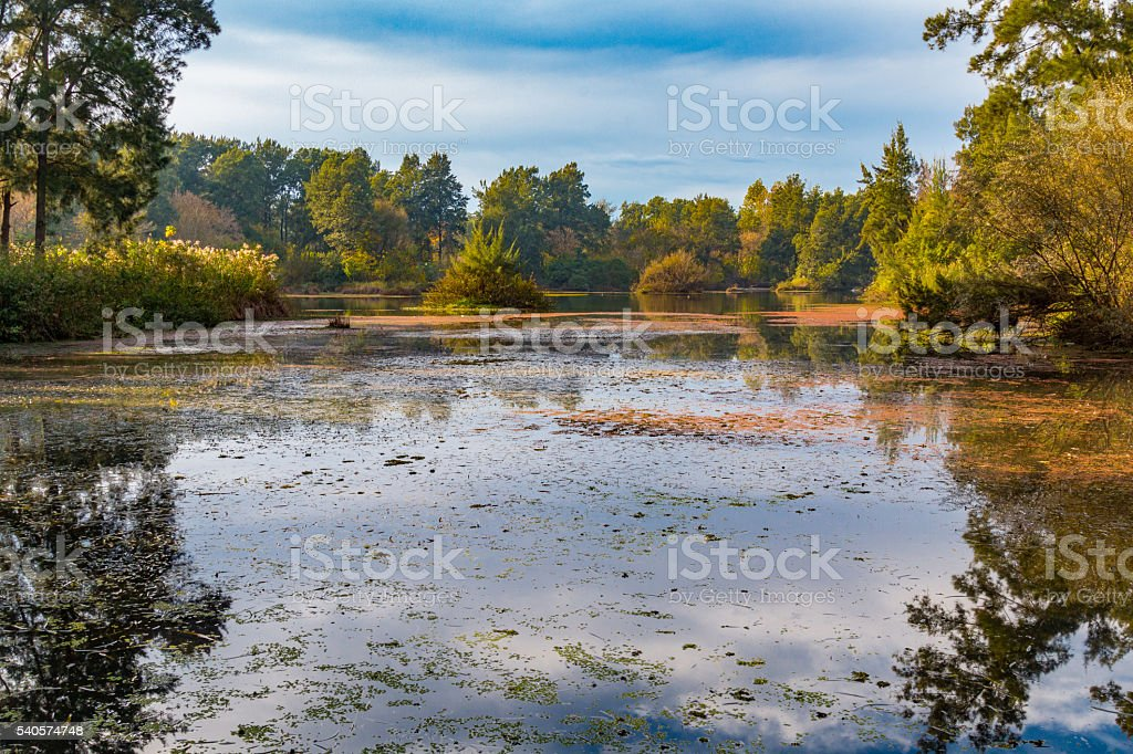 Lagoon Reflections stock photo