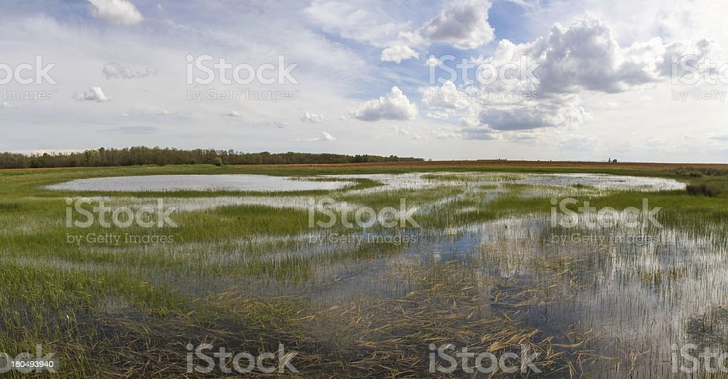 Lagoon wetland in the field - Laguna humedal stock photo