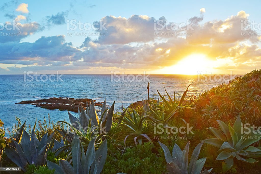 Laguna Beach Sunset stock photo