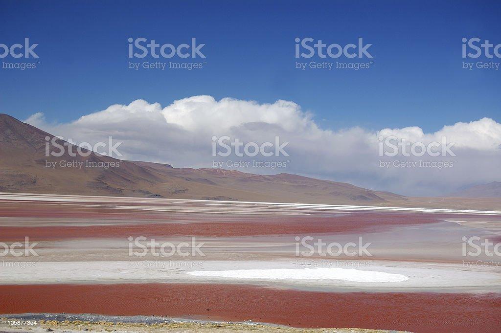 Laguna Colorada, Bolivia stock photo
