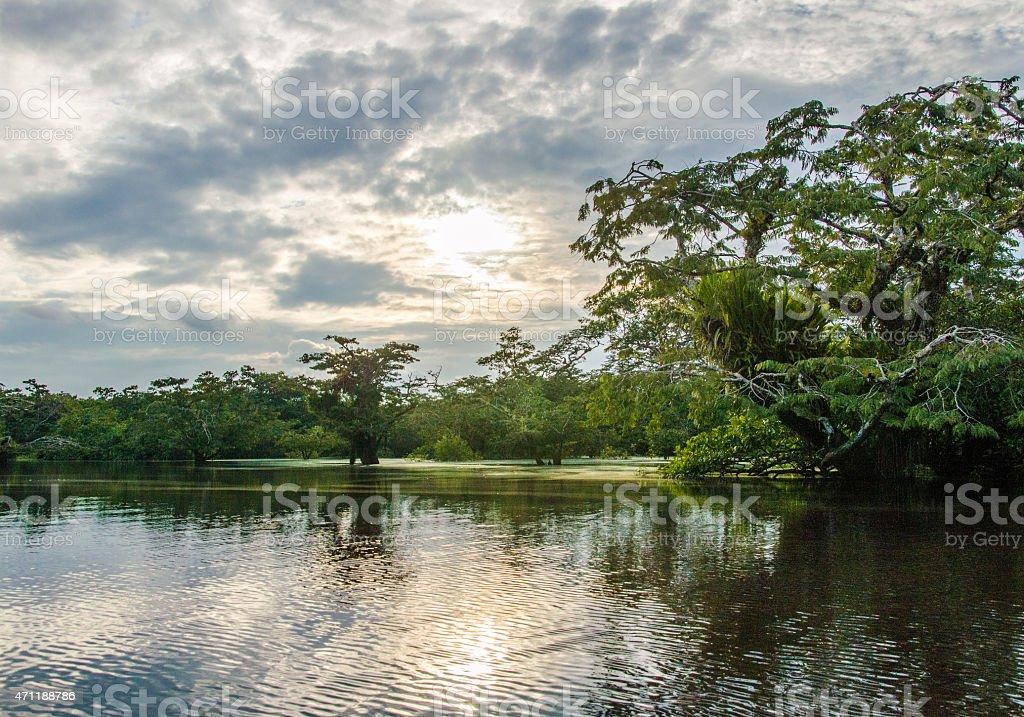 Laguna Grande - Lake on Cuyabeno river in Cuyabeno Reserve. stock photo