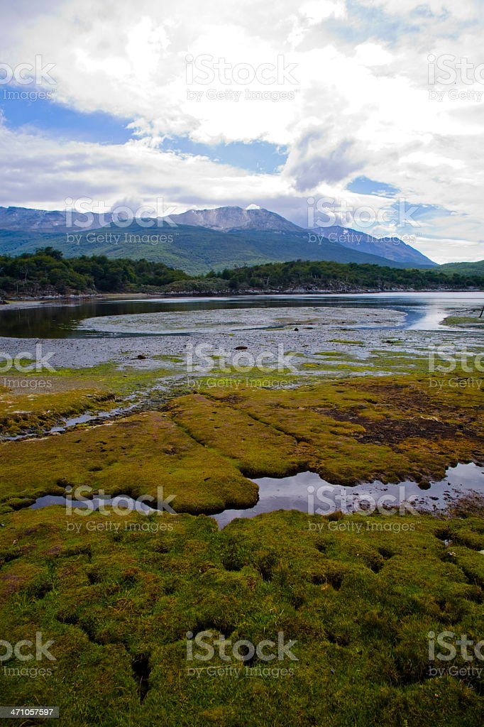 Laguna Negra Tierra Del Fuego Argentina royalty-free stock photo
