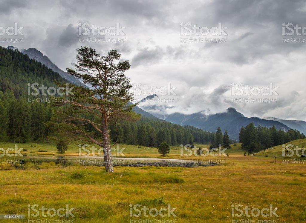 Lai Nair, Switzerland stock photo