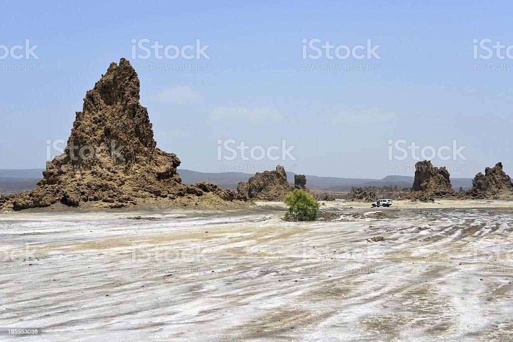 Lake Abbe, Djibouti: limestone chimneys and salt pans royalty-free stock photo