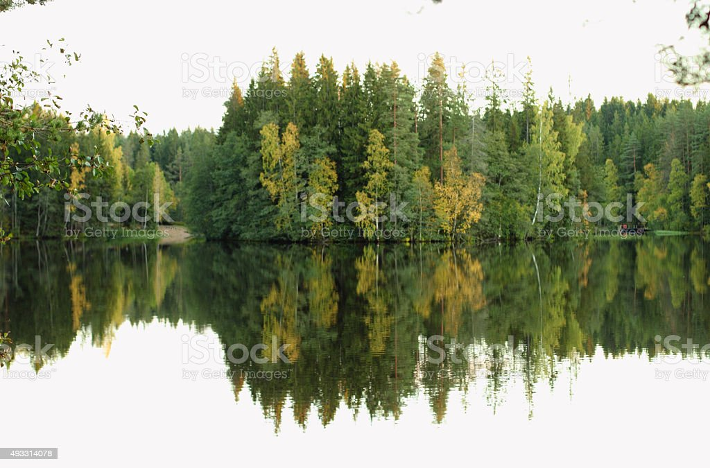 Lake and forest in autumn. stock photo