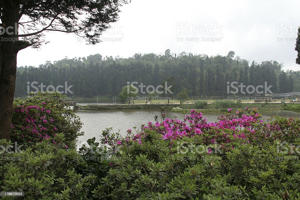 Lake and Garden royalty-free stock photo