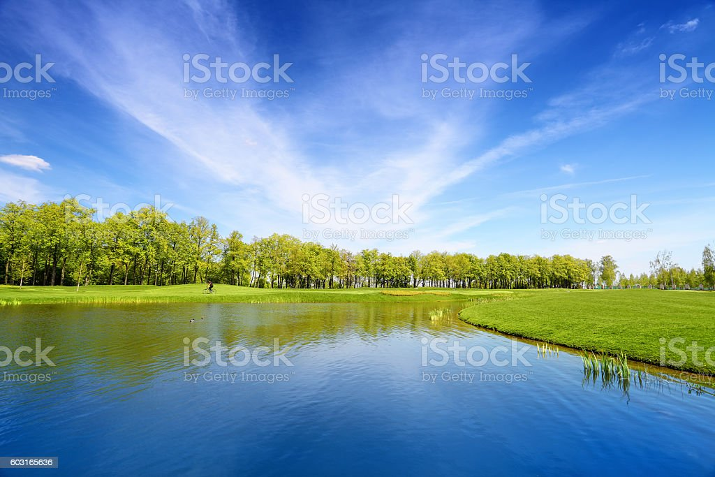 Lake and green meadow stock photo