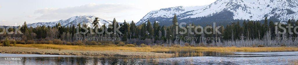 Lake and mountains royalty-free stock photo