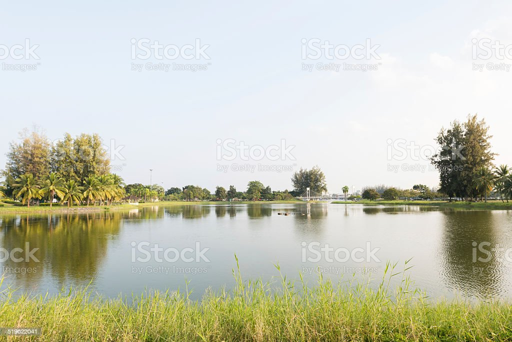 Lake and park stock photo