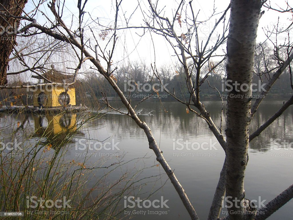 lake and trees in winter in yangzhou stock photo