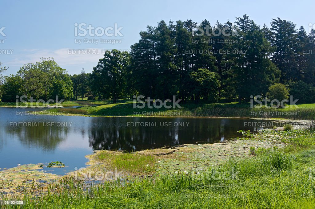 Lake and Woodlands at Arboretum stock photo