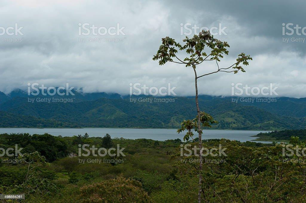 Lake Arenal stock photo