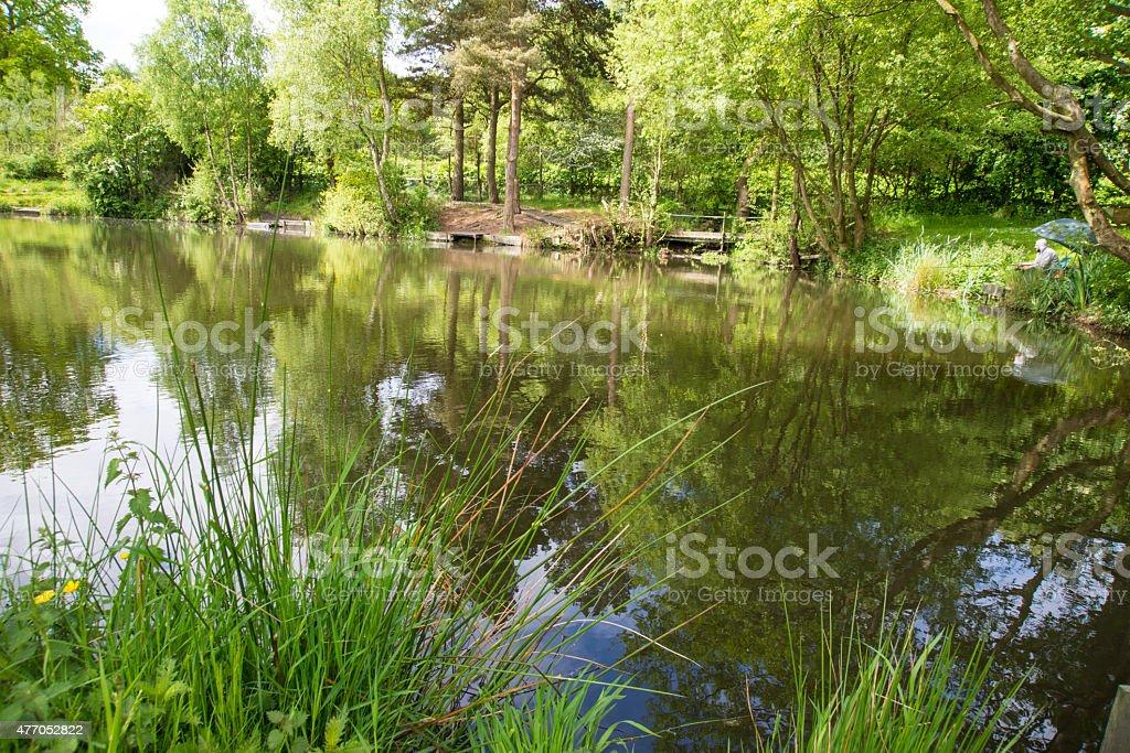 Lake at Cannock Chase. stock photo