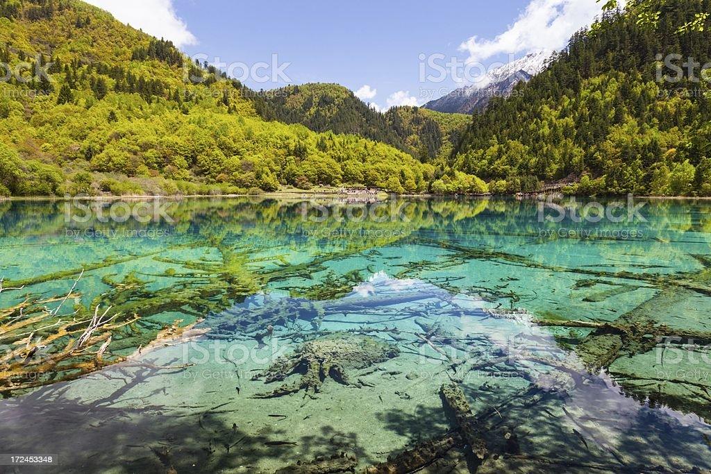 Lake at Jiuzhaigou, Sichuan, China stock photo