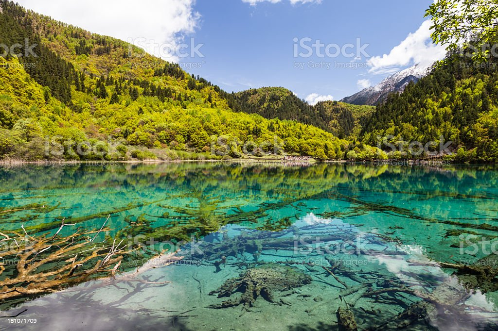 Lake at Jiuzhaigou, Sichuan, China royalty-free stock photo