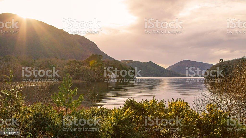 Lake at Killarney stock photo