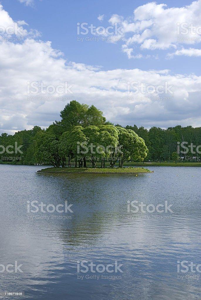 Lake at the urban park royalty-free stock photo