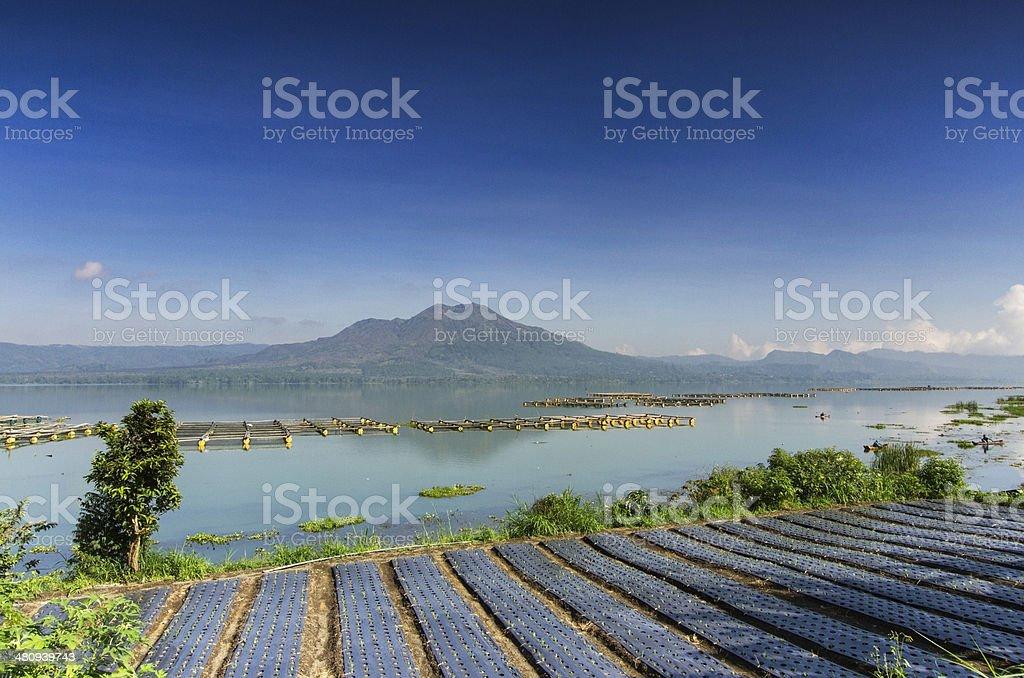 Lake Batur in Bali royalty-free stock photo
