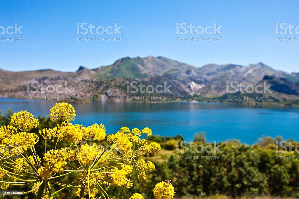 Lake between mountains. Castilla y Leon, Spain. stock photo