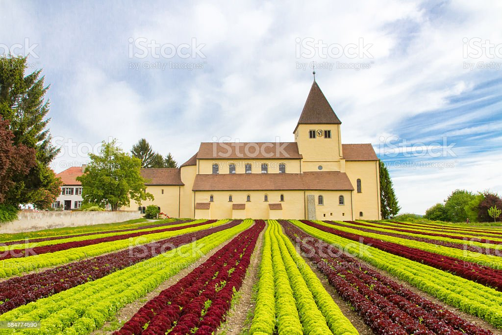 Lake Bodensee, Insel Reichenau, Germany stock photo