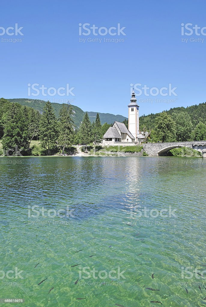 Lake Bohin,Triglav National Park,Slovenia stock photo