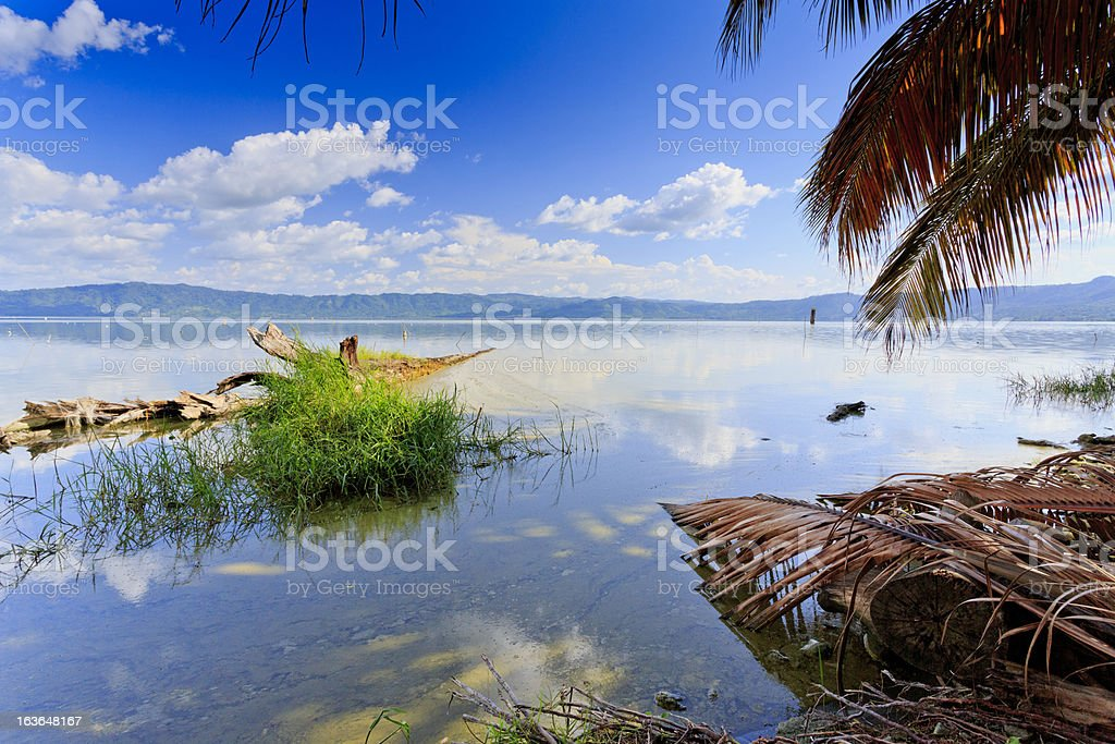 Lake Bosumtwe with palms stock photo