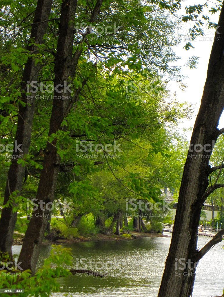 Lake Champlain, Plattsburgh Bay, New York , trees and water stock photo