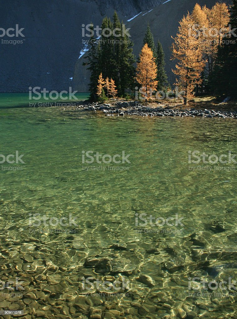 Lake Chester with autumn larches stock photo