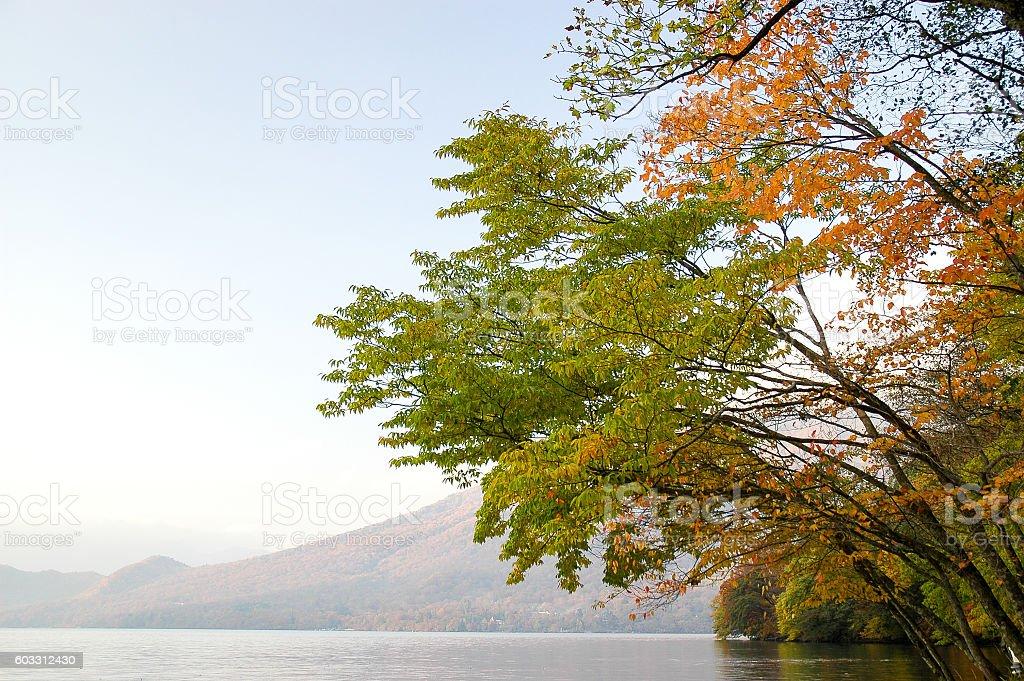 Lake Chuzenji in Autumn stock photo