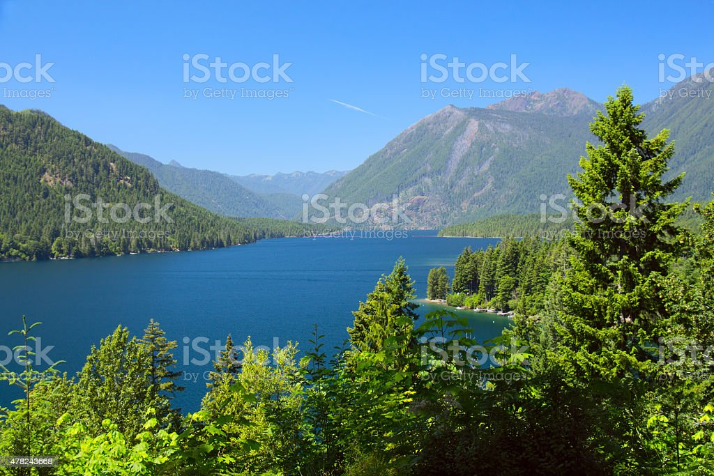 Lake Cushman Cove in Summer stock photo