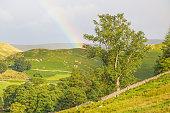 Lake District Rainbow Landscape