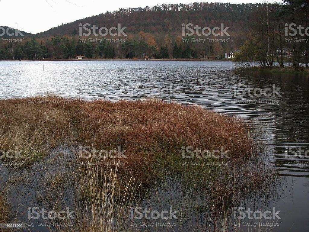 Lake during winter stock photo